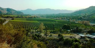 400px-City_of_Fillmore_Panorama_010
