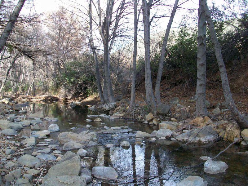 Lion-canyon-creek