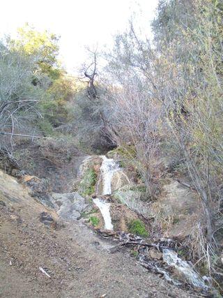 Small_waterfall_los_padres_jan2010