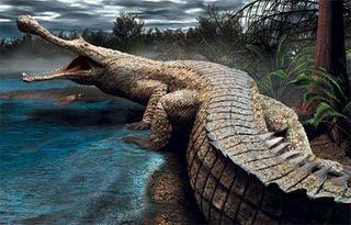 Sarcosuchus_imperator