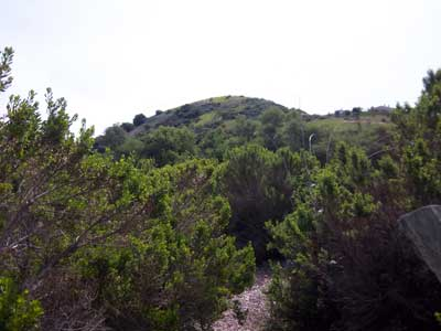 Aliso_wood_canyon_small_trail