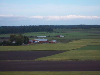 Ebeys-prairie-whidbey-island